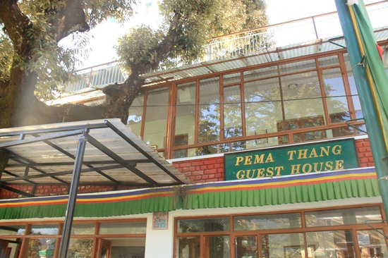 Hotel Pema Thang: Front entrance