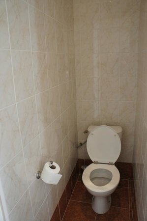 Hotel Carlton Nice : отдельный туалет