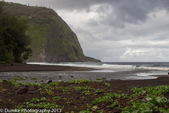 Waipi'o Valley : River flowing into the ocean