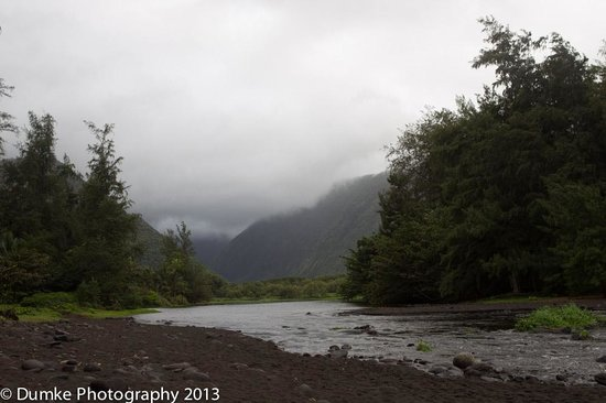 Waipi'o Valley : Looking back up the river running through the valley