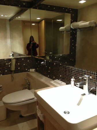 The Metropolitan Hotel & Spa New Delhi: View of the bathroom