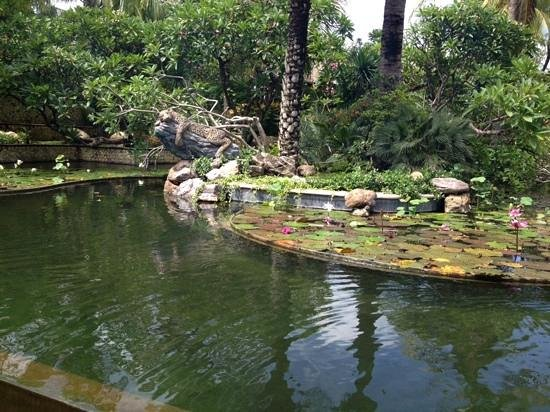 Padma Resort Legian: one of many ponds