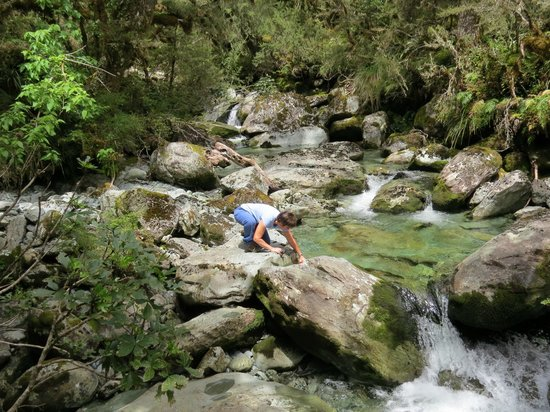 Routeburn Track Hiking Tour - New Zealand Breeze: Clean, clear water - a rarity in today's world