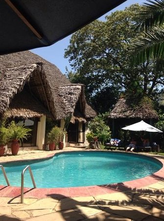 L'Oasis Lodge and Annexe: by the pool outside the lounge