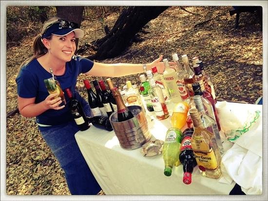 Royal Chundu Luxury Zambezi Lodges: island picnic