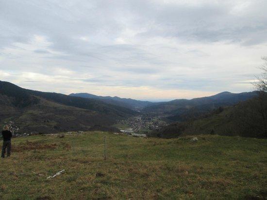 Ferme du Bergenbach: vue sur la vallée