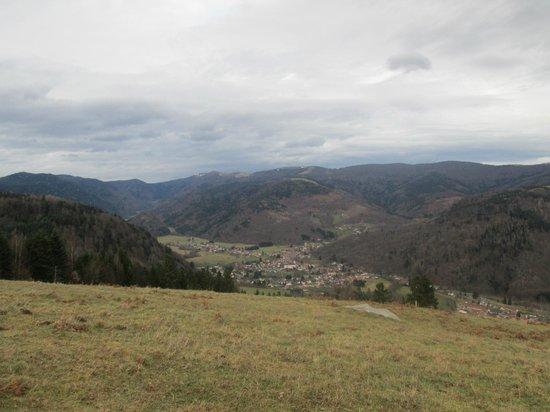 Ferme du Bergenbach: vue du Bergenbach