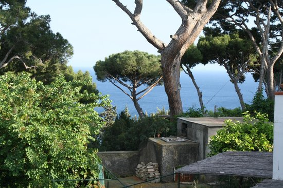 Hotel La Tosca: View from 'single room with sea view'