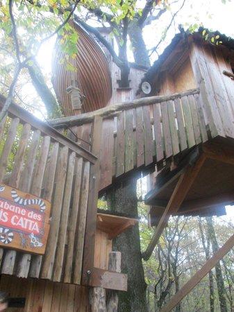 Parc Animalier de Sainte-Croix - Hébergements : makis cattas