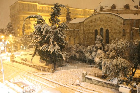 Green Olive Tours: No snow in 50 years but 2013::