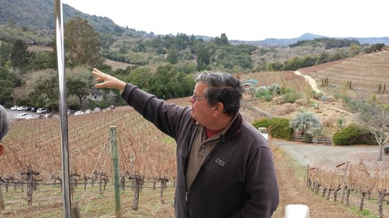Benziger Family Winery: Our guide, here pointing to Mt. Sonoma and explaining its impact on the micro-climates on the fa