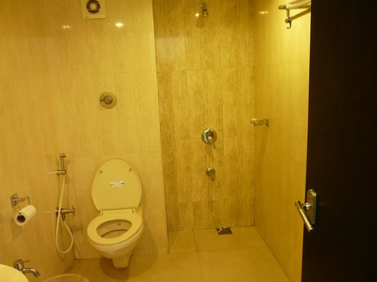 Hotel Veenu International: Bathroom