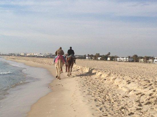 Hotel Palace Oceana Hammamet: beach