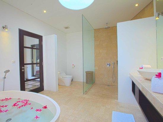 Taman Wana Ayurvedic Luxury Hotel and Villas in Seminyak : VILLA SILBA