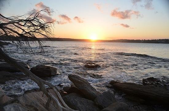 Cronulla & National Park Ferry Cruises: Sunset over port hacking from Jibbon point