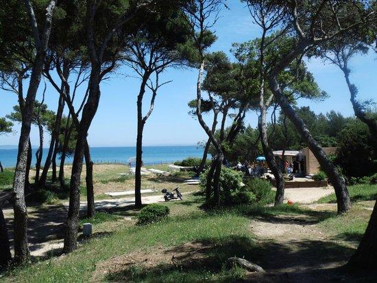 Le Domaine de la Mer : La plage et le restaurant de plage