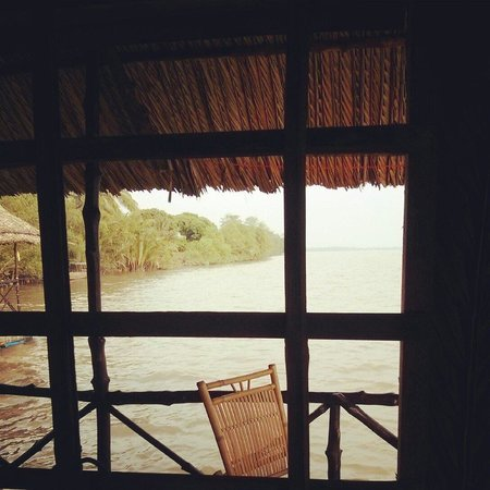 Mekong Floating House: The view from the room.