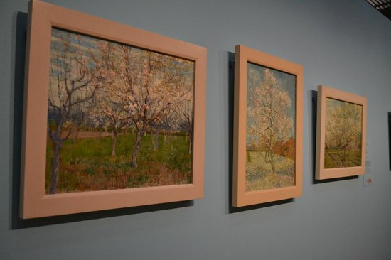 Van-Gogh-Museum: A series of cherry blossom