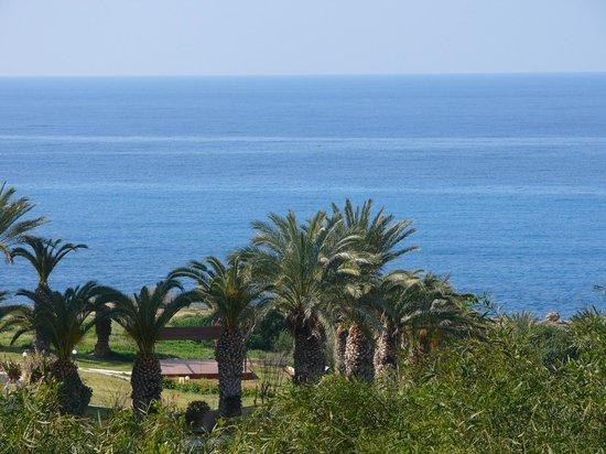 Theo Sunset Bay Holiday Village: Вид вокруг