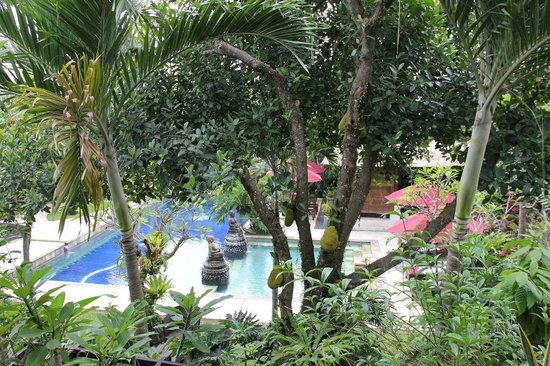 Bebek Tepi Sawah Villas & Spa: View from Room