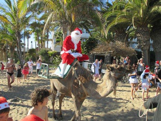 VIK Hotel San Antonio: Santa on a camel