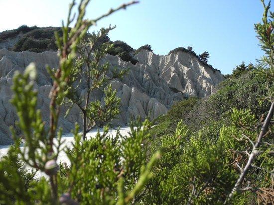 Gerakas Bay: Gerakas - la roccia calcarea