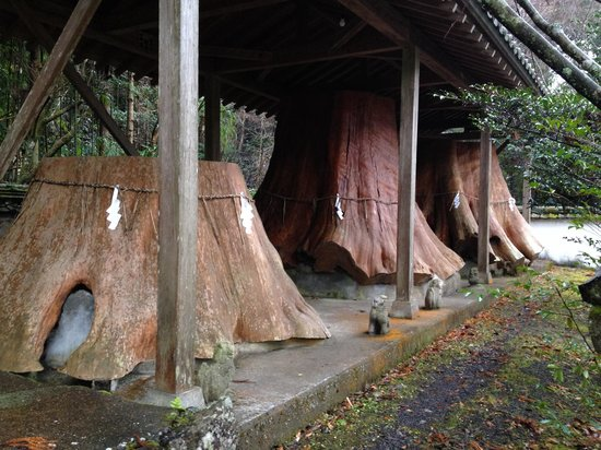 Unaki Hime Shrine: Wood stock worshiped by the people