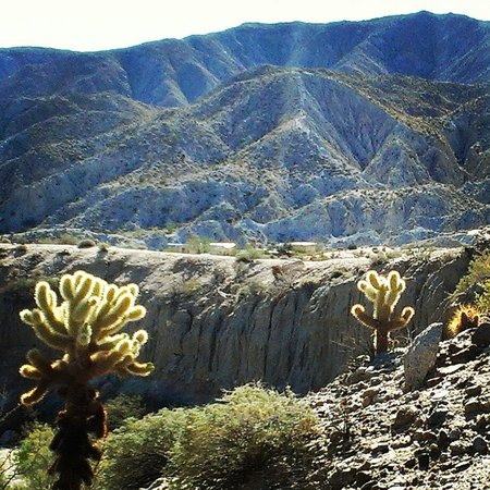 Agua Caliente County Park Campground : Hike around campground