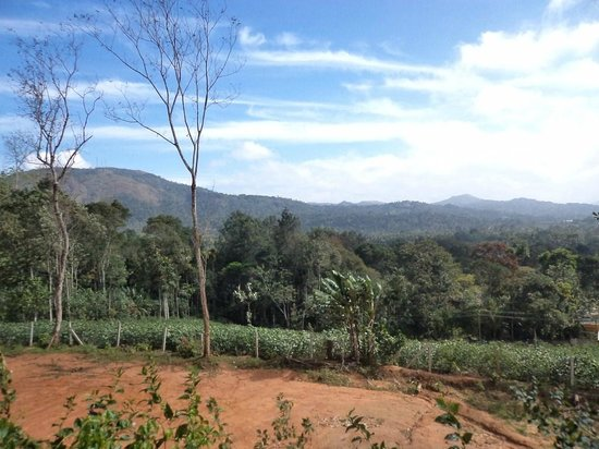 Elephant Junction - Day Tours: View from the Elephant