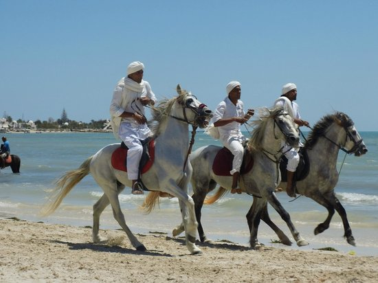 Club Med Djerba la Douce : Démonstrations acrobatiques sur la plage