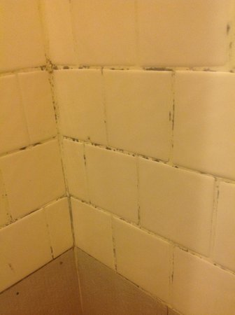Star Hotel Chiang Mai: Shower room scummy  mould incrusted place