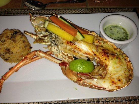 Cocobay Resort: Fantastica grilled Lobster