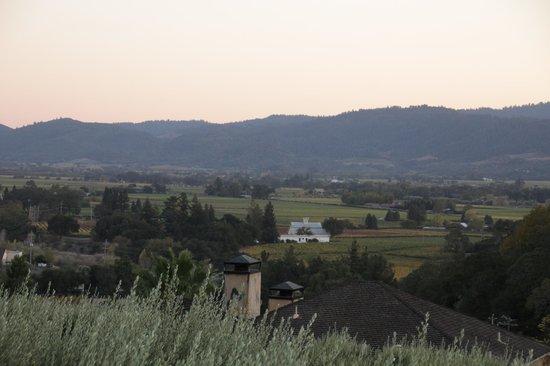 Auberge du Soleil : Napa Valley view