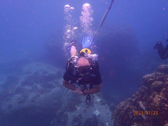 Koh Tao Divers: и тепло и видимость хорошая