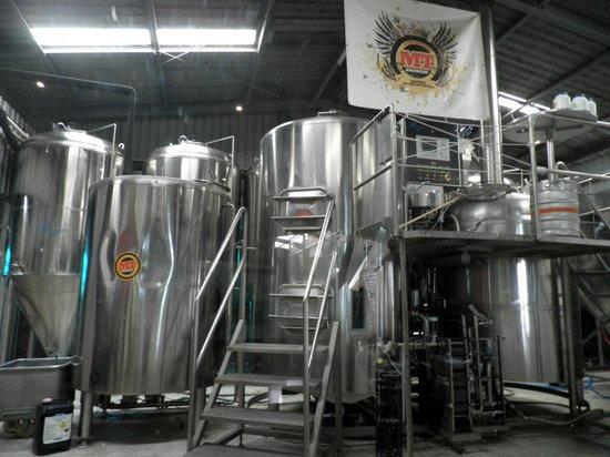 Mt Tamborine Brewery : Brewery area