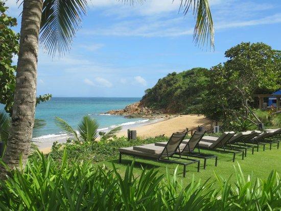 Beach Picture Of W Retreat Spa Vieques Island Isla