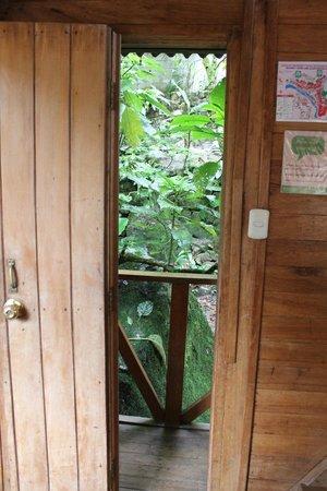 Rupa Wasi  Lodge : Peeking out the door