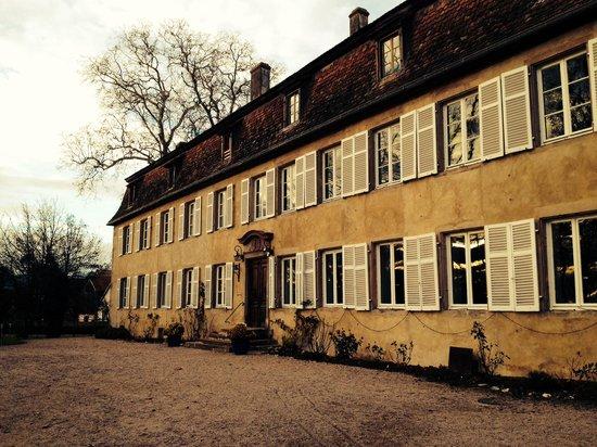 Chateau de Grunstein : Facade