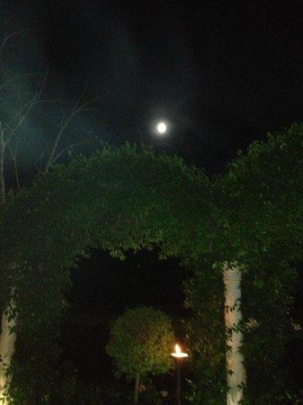 Ca' delle Anfore: Cena al chiaro di luna