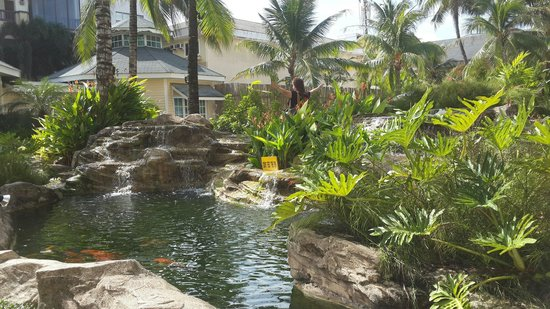 Henann Garden Resort: Fish pond