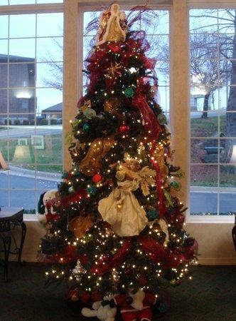 Angel Inn Central : Angel Tree at Angel Inn, Branson