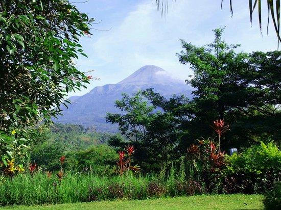 """Grand Trawas Resort Mojokerto: """"Penanggungan"""" Mountain"""