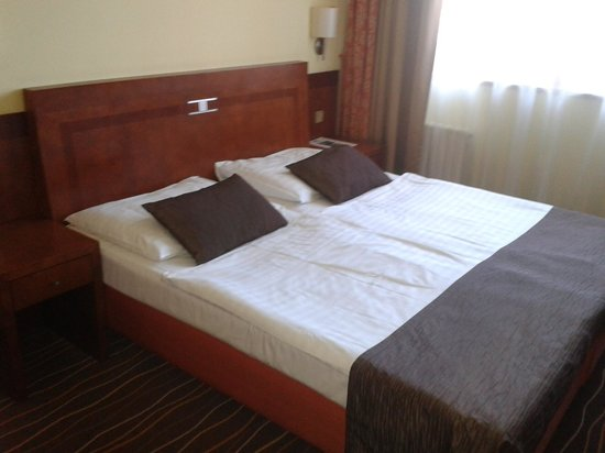 Luxury Family Hotel Bila Labut: Room