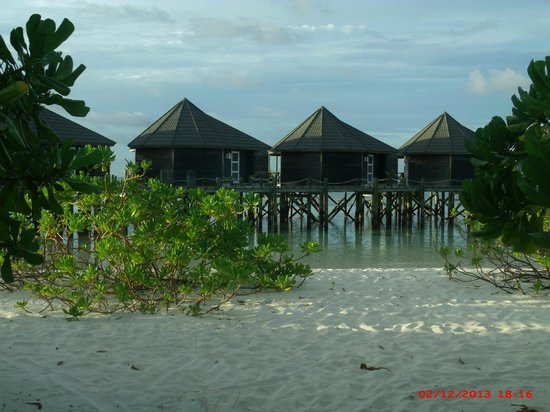 Kuredu Island Resort & Spa : The view from our beach bungalow