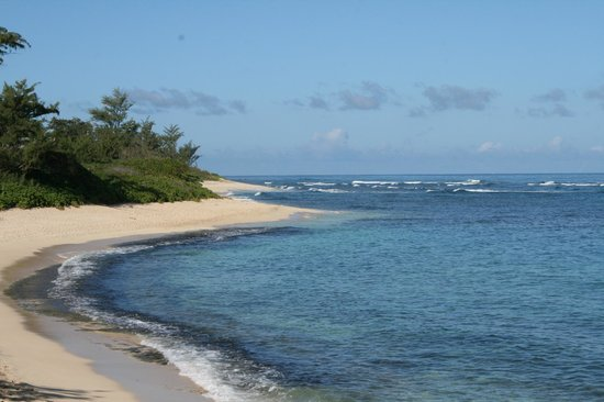 Owen's Retreat : Owen's beach :)