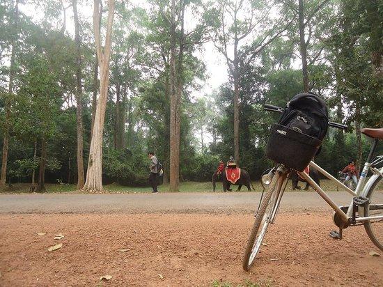 Angkor Vat : take a break