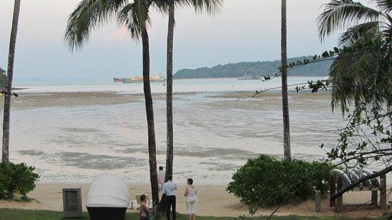 Crowne Plaza Phuket Panwa Beach : Отлив ))))