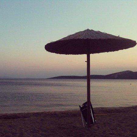 Opa Taverna : Paradise!!!