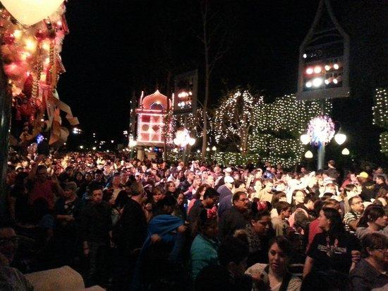 Park Vue Inn: Disneyland crowds at christmas
