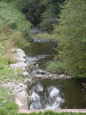 Auberge du Lac de Guery : petit ruisseau engendré par le lac